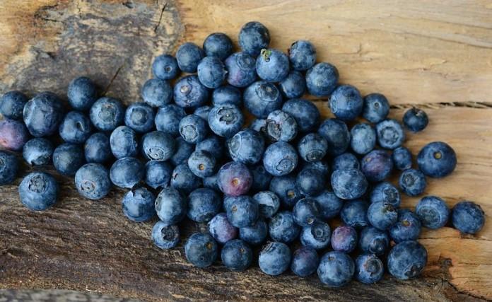 Ketahui Macam Macam Buah Berry Dan Manfaatnya